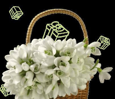 Весна подарков | Акция Lad